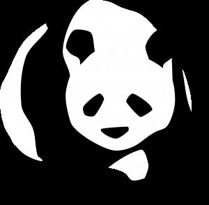 panda-312682